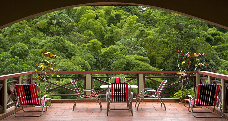 The spectacular rainforest setting of the lodge